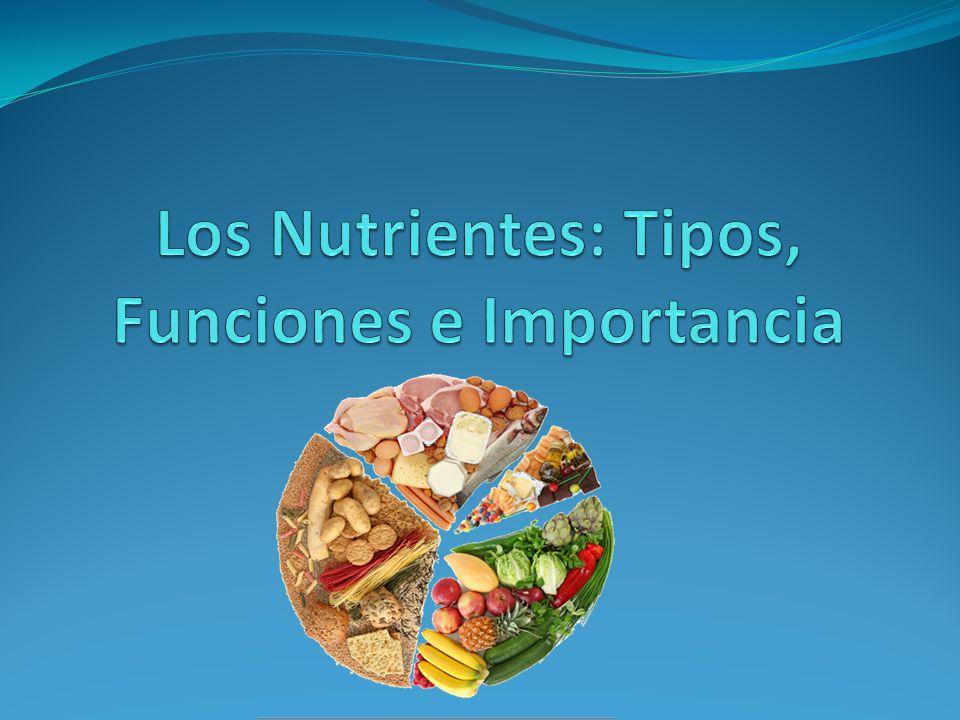 Los Nutrientes: Tipos, Funciones e Importancia