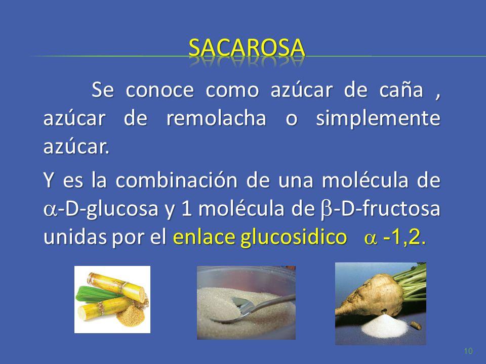 sacarosa Se conoce como azúcar de caña , azúcar de remolacha o simplemente azúcar.