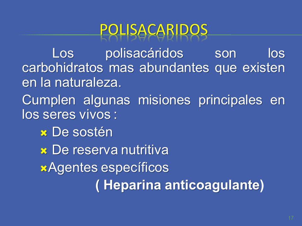 polisacaridosLos polisacáridos son los carbohidratos mas abundantes que existen en la naturaleza.