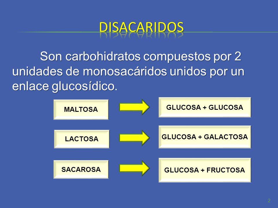 disacaridosSon carbohidratos compuestos por 2 unidades de monosacáridos unidos por un enlace glucosídico.