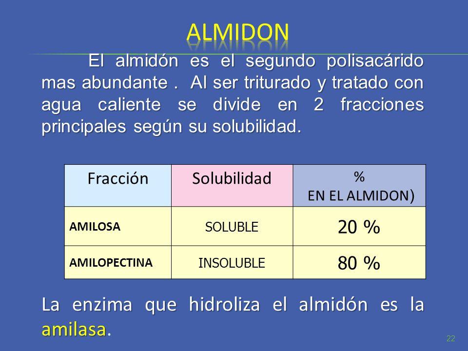 almidon La enzima que hidroliza el almidón es la amilasa. Fracción