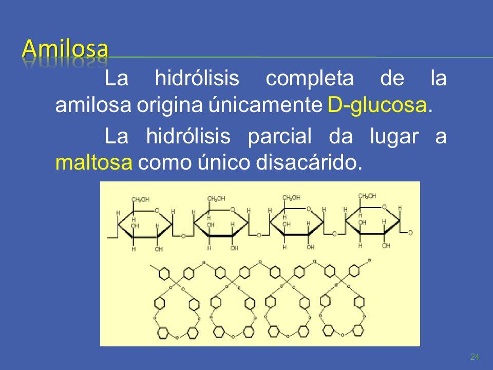 AmilosaLa hidrólisis completa de la amilosa origina únicamente D-glucosa.