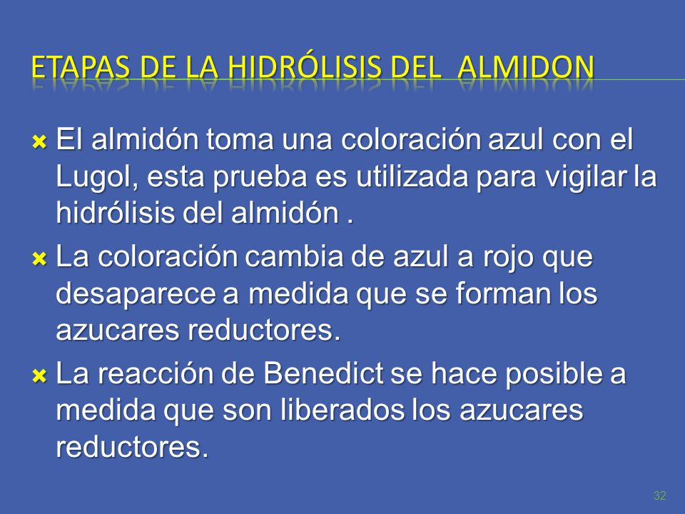 Etapas de la hidrólisis del almidon