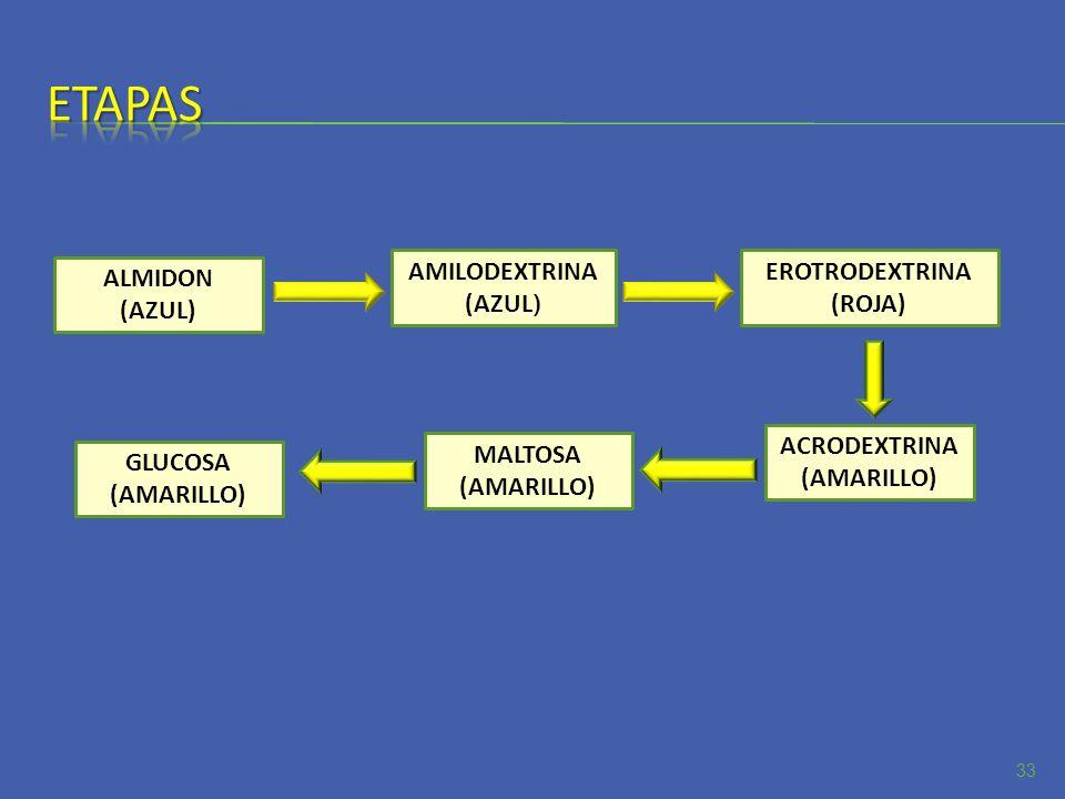 Etapas AMILODEXTRINA (AZUL) EROTRODEXTRINA (ROJA) ALMIDON (AZUL)
