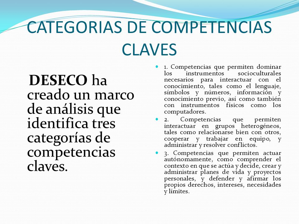 CATEGORIAS DE COMPETENCIAS CLAVES