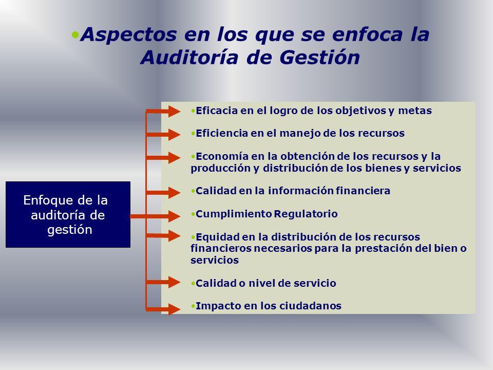 Aspectos en los que se enfoca la Auditoría de Gestión