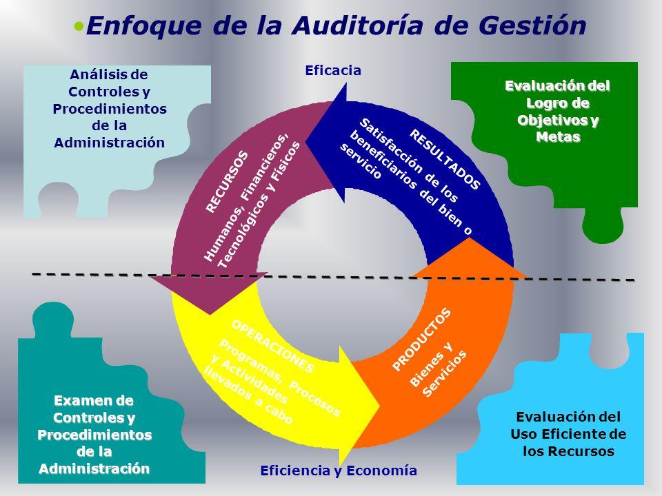 Enfoque de la Auditoría de Gestión