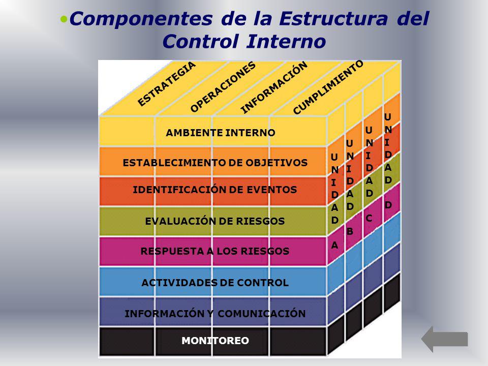 Componentes de la Estructura del Control Interno