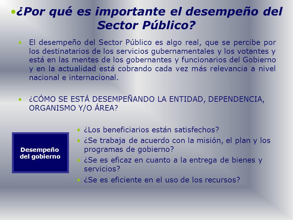 ¿Por qué es importante el desempeño del Sector Público