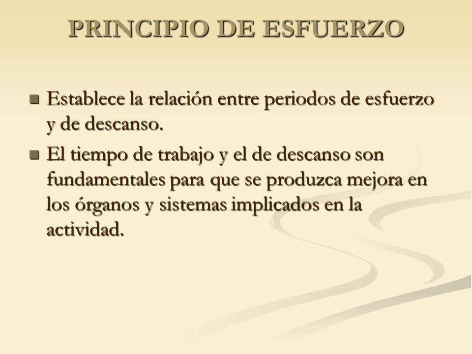 PRINCIPIO DE ESFUERZO Establece la relación entre periodos de esfuerzo y de descanso.