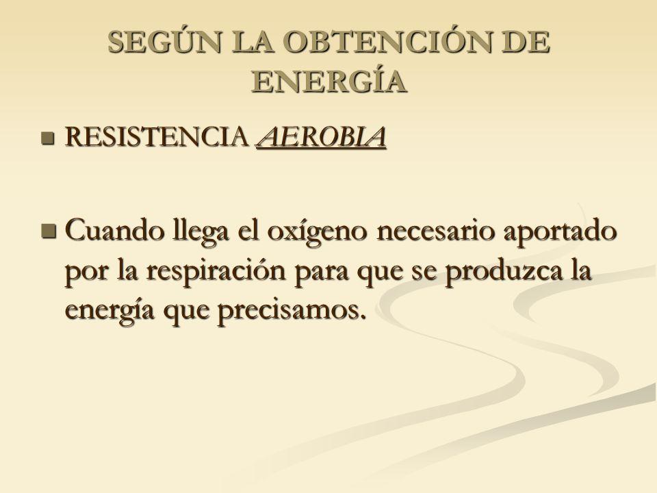 SEGÚN LA OBTENCIÓN DE ENERGÍA