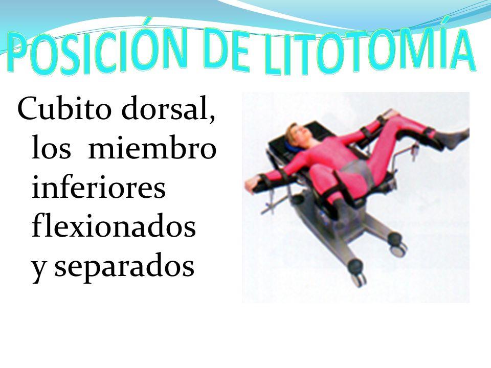 POSICIÓN DE LITOTOMÍA Cubito dorsal, los miembro inferiores flexionados y separados