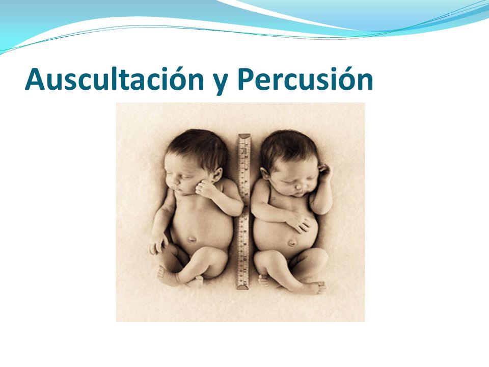 Auscultación y Percusión