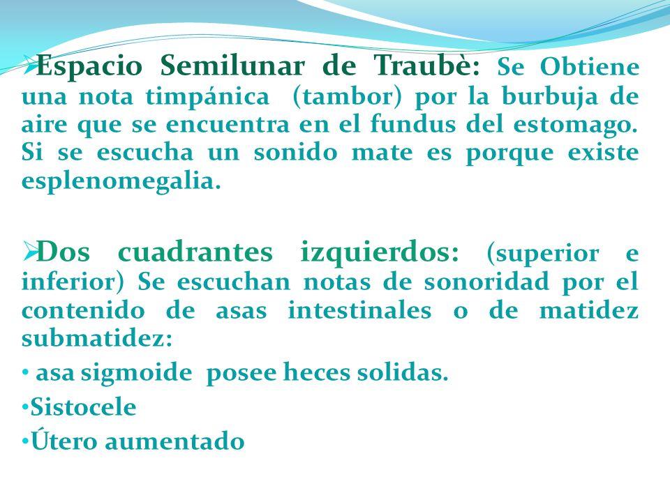 Espacio Semilunar de Traubè: Se Obtiene una nota timpánica (tambor) por la burbuja de aire que se encuentra en el fundus del estomago. Si se escucha un sonido mate es porque existe esplenomegalia.