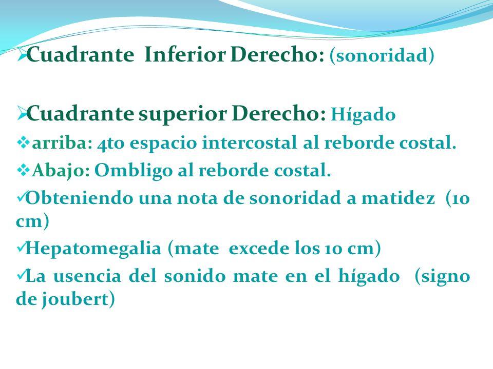 Cuadrante Inferior Derecho: (sonoridad)