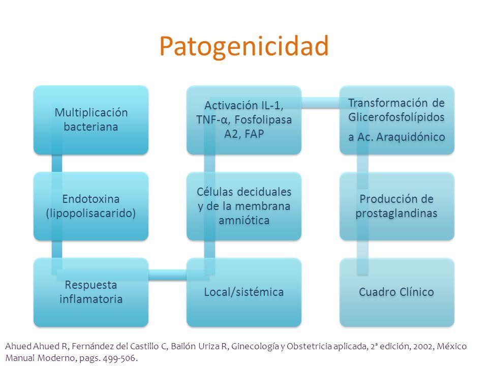 Patogenicidad Multiplicación bacteriana Endotoxina (lipopolisacarido)