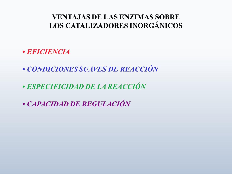 VENTAJAS DE LAS ENZIMAS SOBRE LOS CATALIZADORES INORGÁNICOS