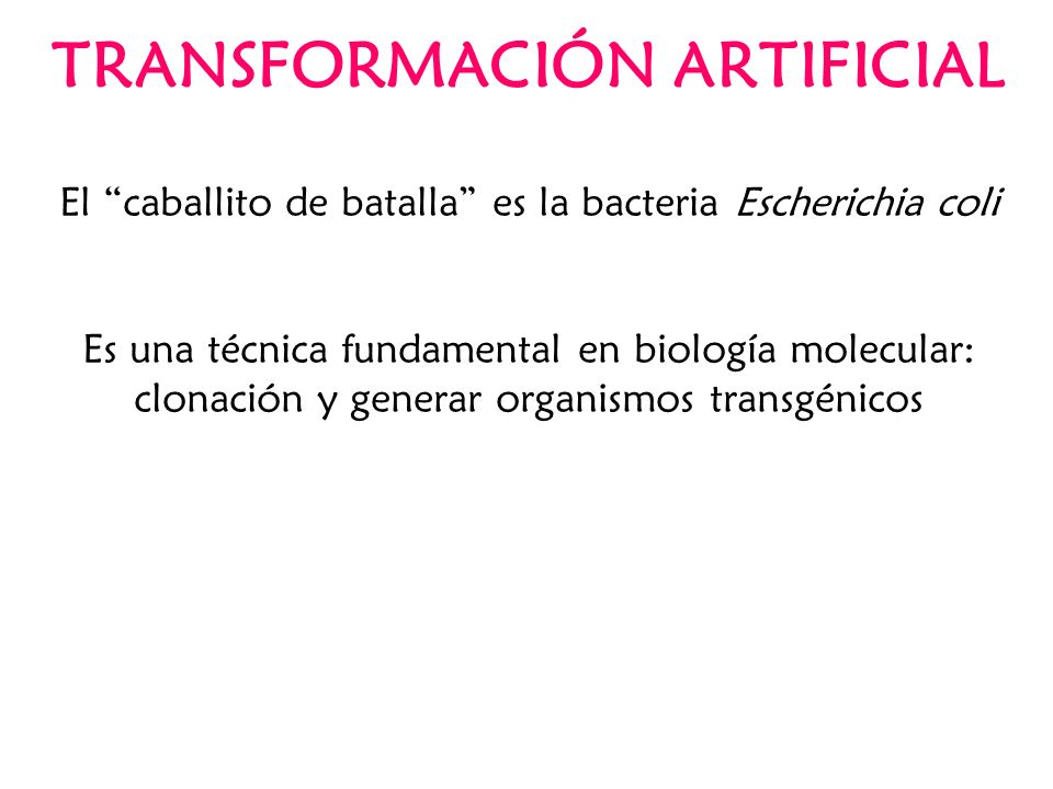 TRANSFORMACIÓN ARTIFICIAL