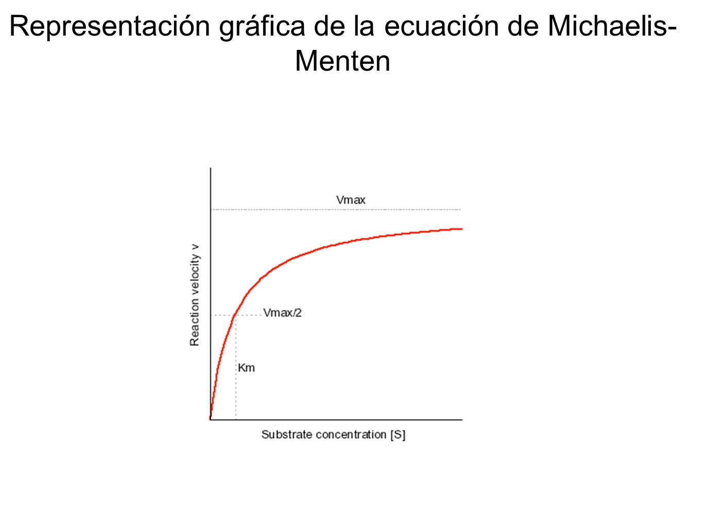 Representación gráfica de la ecuación de Michaelis-Menten
