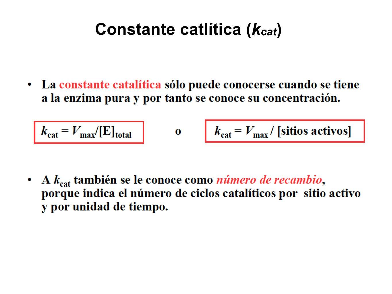 Constante catlítica (kcat)
