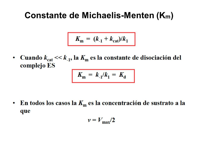 Constante de Michaelis-Menten (Km)
