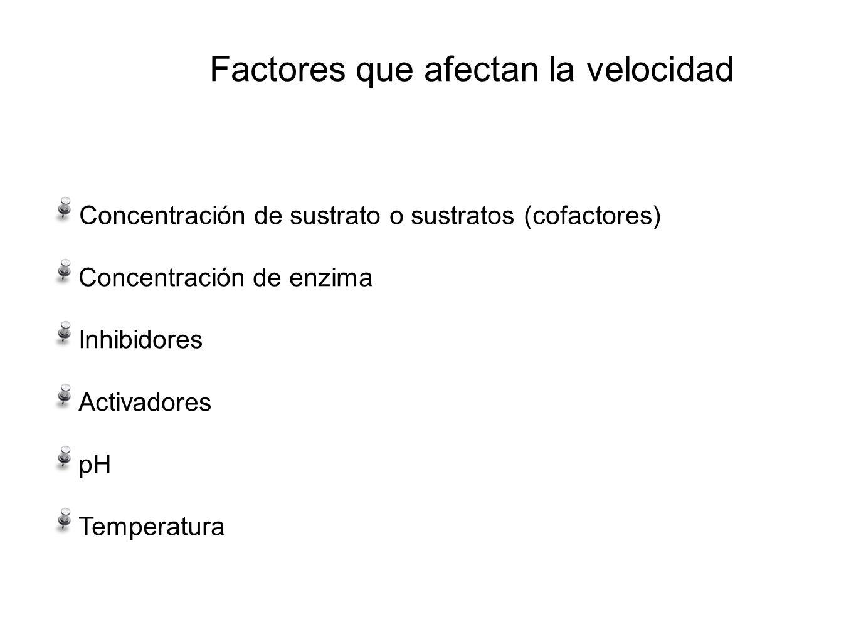 Factores que afectan la velocidad