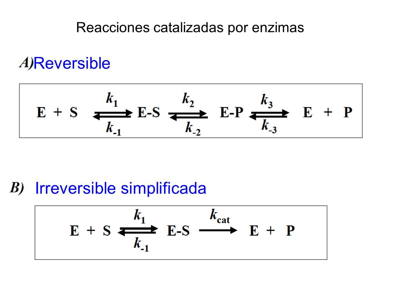 Irreversible simplificada