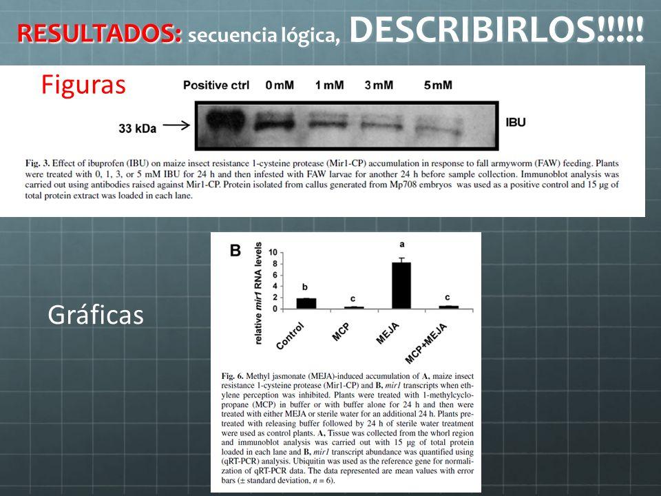 RESULTADOS: secuencia lógica, DESCRIBIRLOS!!!!!