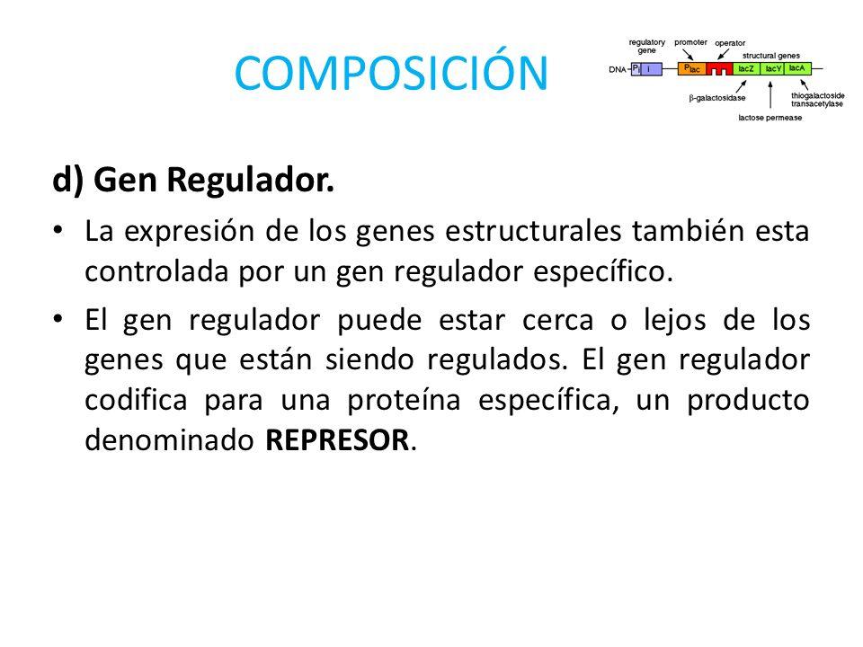 COMPOSICIÓN d) Gen Regulador.