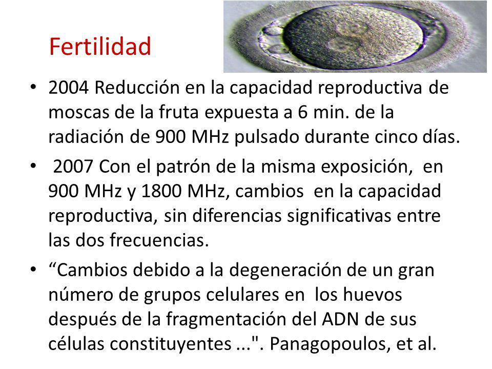 Fertilidad 2004 Reducción en la capacidad reproductiva de moscas de la fruta expuesta a 6 min. de la radiación de 900 MHz pulsado durante cinco días.