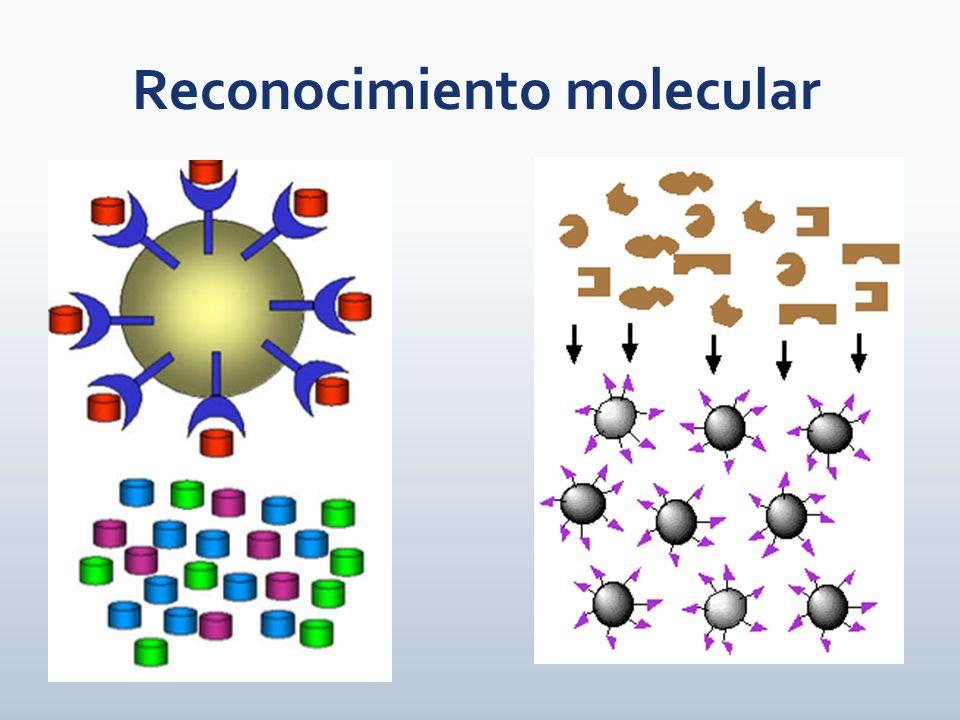 Reconocimiento molecular