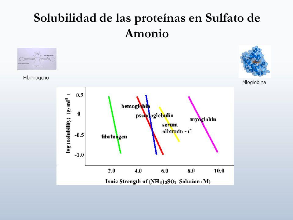 Solubilidad de las proteínas en Sulfato de Amonio