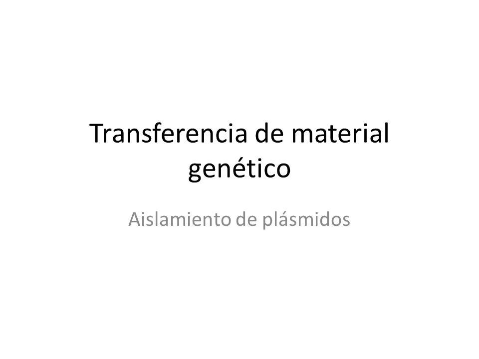 Transferencia de material genético