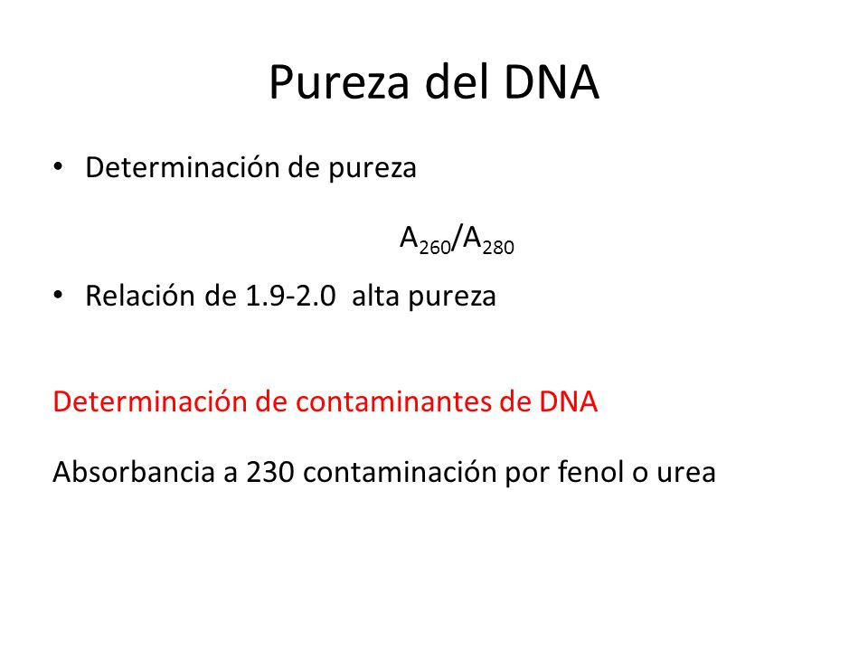 Pureza del DNA Determinación de pureza A260/A280