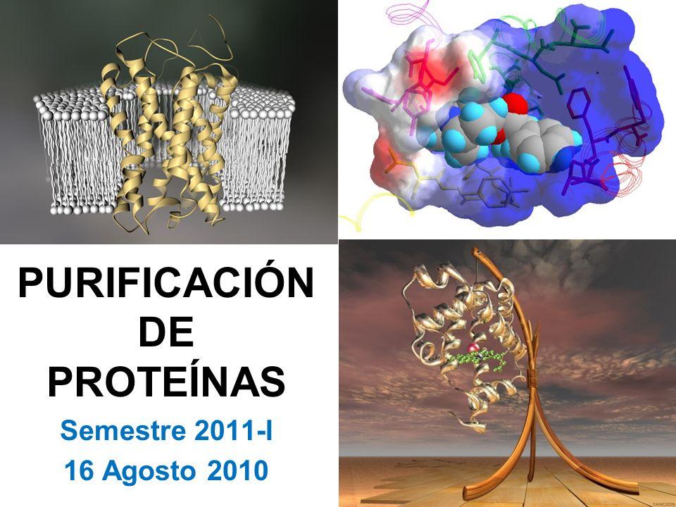 PURIFICACIÓNDE PROTEÍNAS Semestre 2011-I 16 Agosto 2010