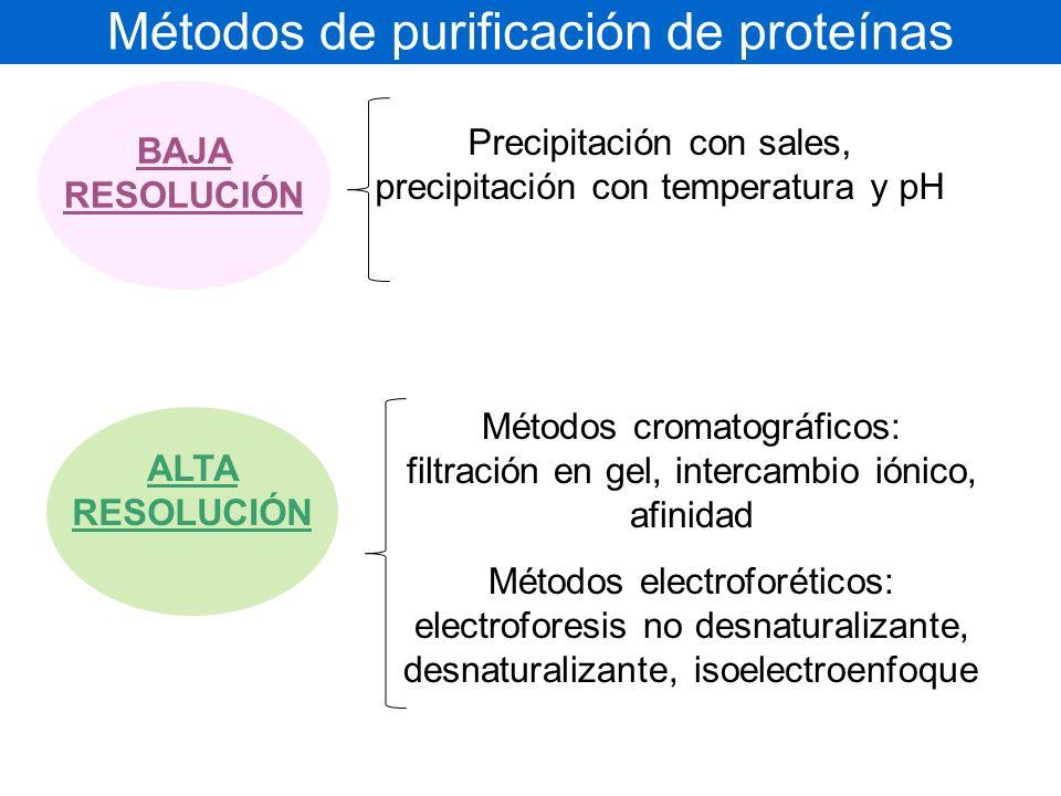 Métodos de purificación de proteínas
