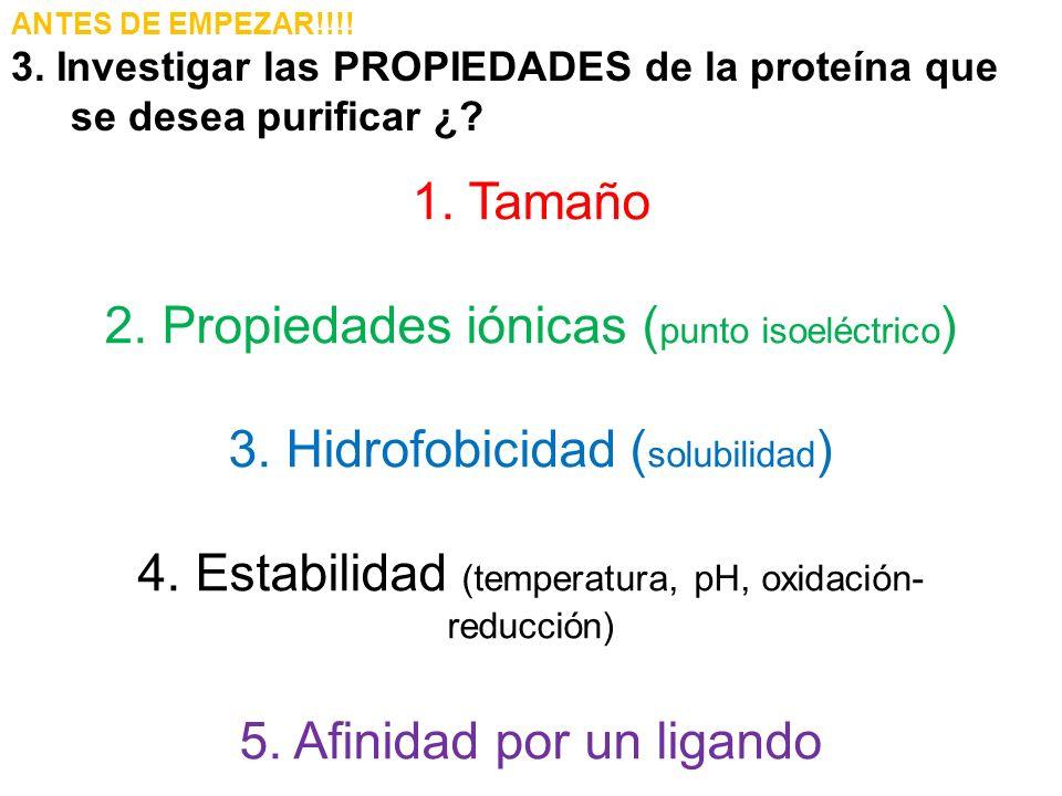 2. Propiedades iónicas (punto isoeléctrico)