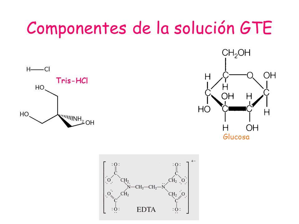 Componentes de la solución GTE