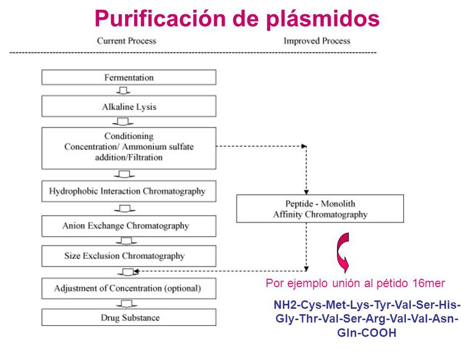 Purificación de plásmidos