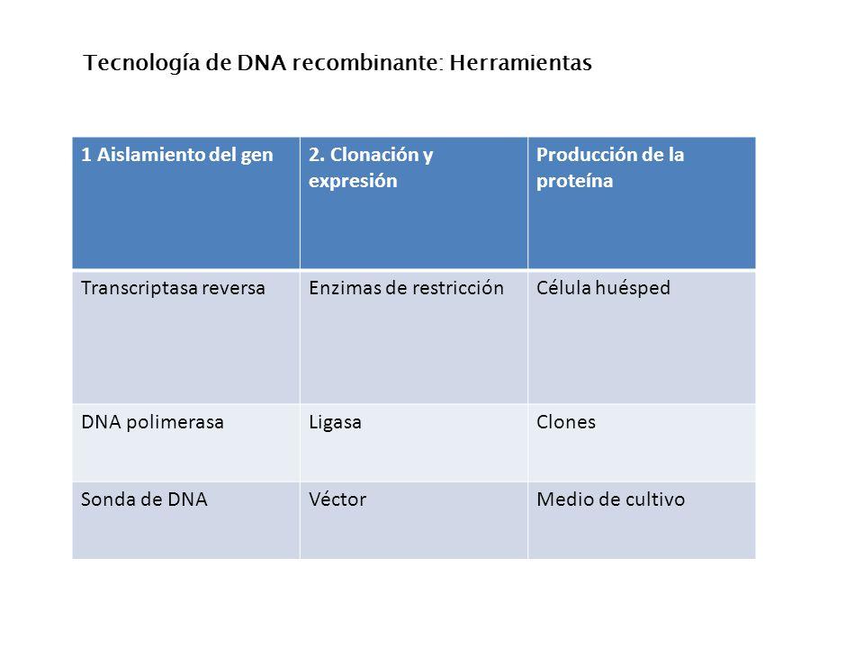 Tecnología de DNA recombinante: Herramientas
