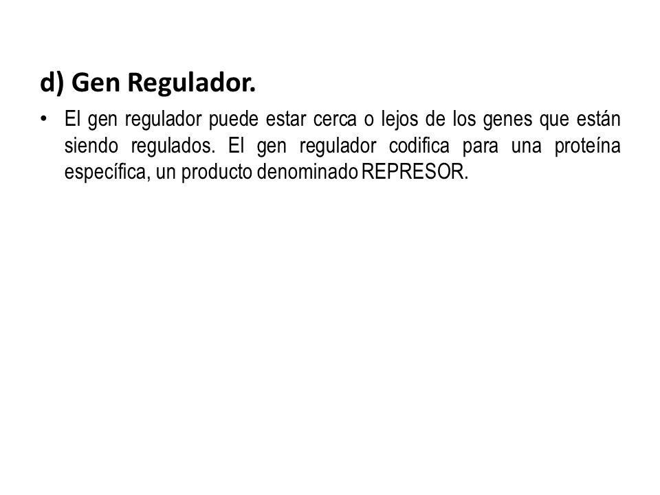 d) Gen Regulador.