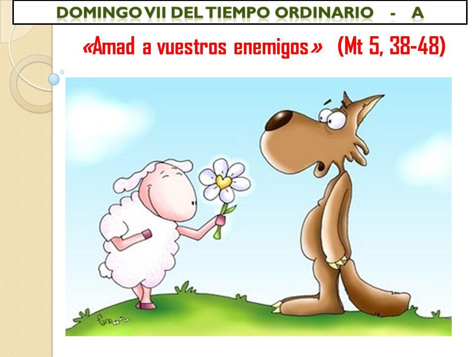 «Amad a vuestros enemigos» (Mt 5, 38-48)