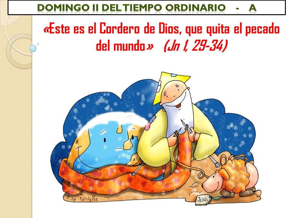 DOMINGO II DEL TIEMPO ORDINARIO - a