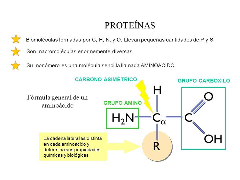 Fórmula general de un aminoácido