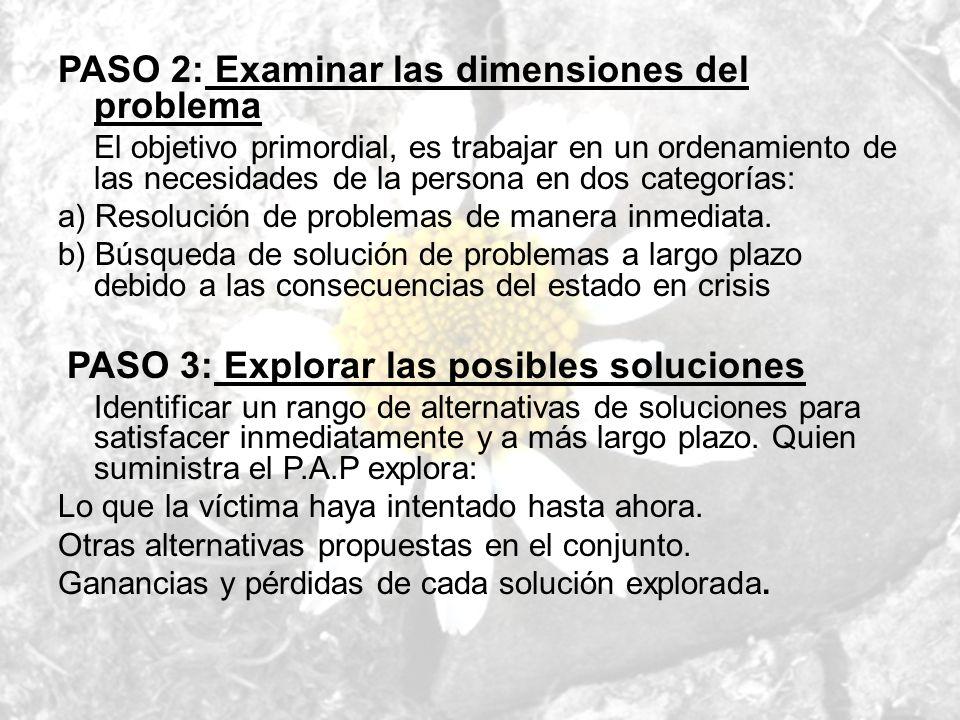 PASO 2: Examinar las dimensiones del problema