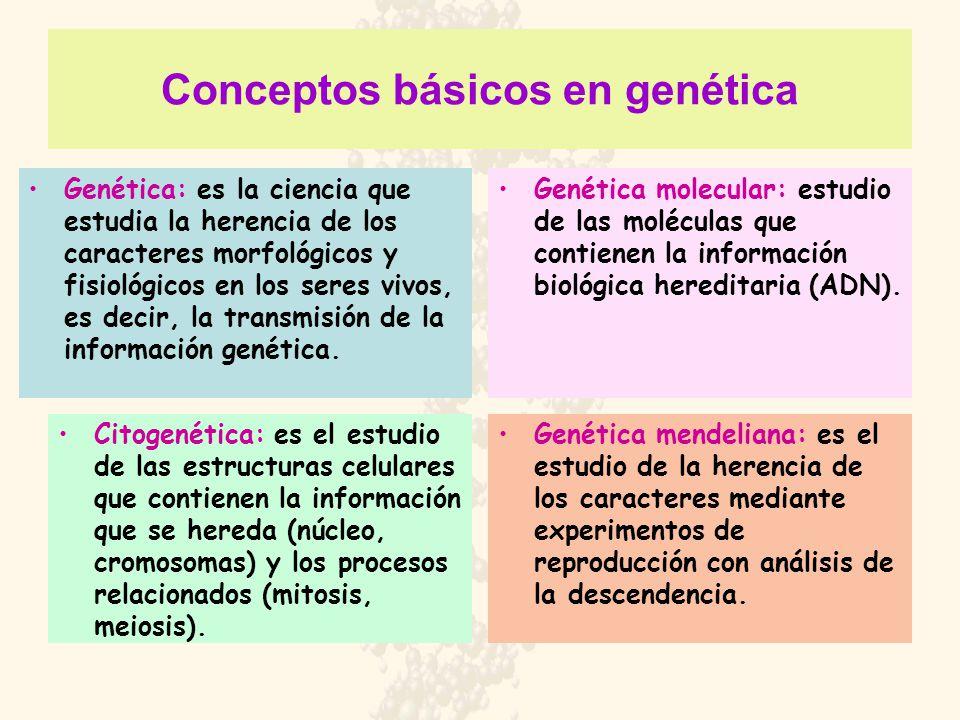 Conceptos básicos en genética