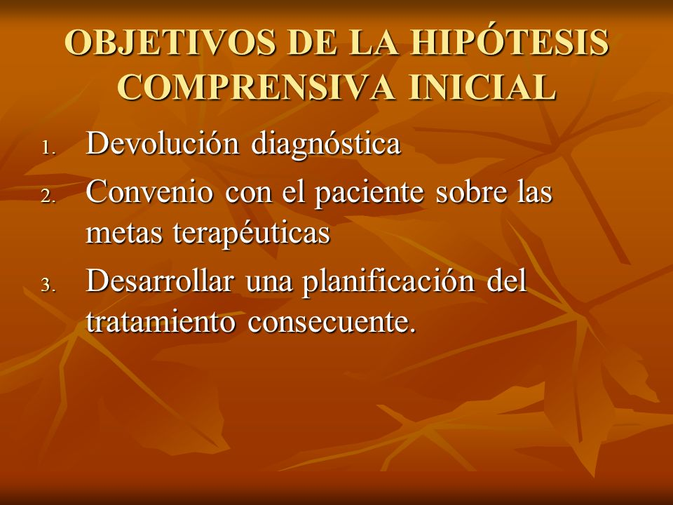 OBJETIVOS DE LA HIPÓTESIS COMPRENSIVA INICIAL