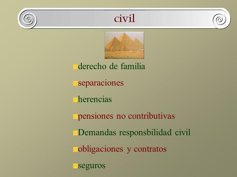 derecho de familia separaciones. herencias. pensiones no contributivas. Demandas responsbilidad civil.