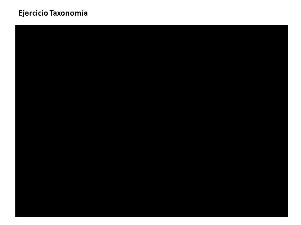 Ejercicio Taxonomía