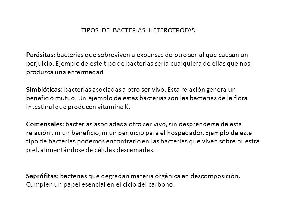 TIPOS DE BACTERIAS HETERÓTROFAS
